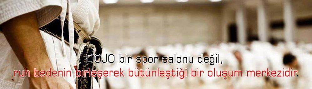 Karate Turkey